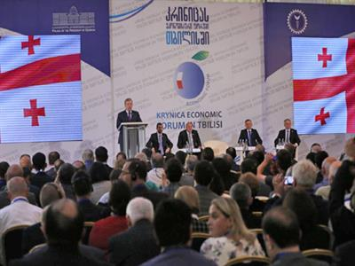 تفلیس میزبان انجمن اقتصادی کراینیکا